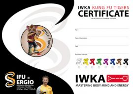 martial arts children grade certificate