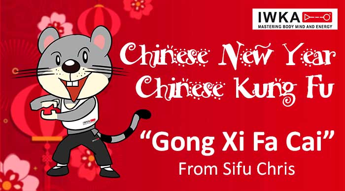 2020 kung fu gong xi fa cai for site